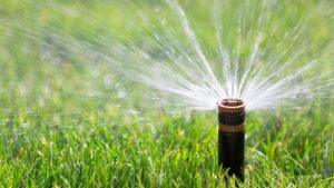 call before installing sprinklers