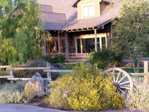 Finding The Best Landscaping Ideas For Utah How To Turn Your